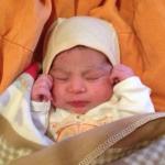 Baby Timba